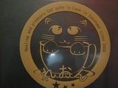 Popular cat cafes