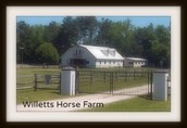 Fall Clinic Host: Willetts Horse Farm, Bolivia NC