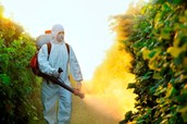 Chemical Agriculture