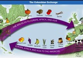 Come Help the Columbian Exchange
