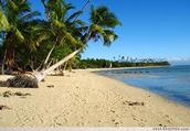 Digging Deeper into Fijian Culture