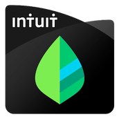 Mint Financial App