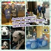 Se sei interessato al nuovo corso per guardia eco-zoofila manda una mail con i tuoi dati a guardiemodena@oipa.org