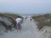 Beach Vitex #3