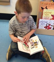 Christopher loves Ladybug Girl books.