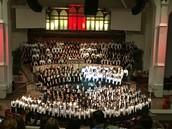 More Pony Choir