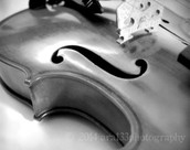 Playing The Viola
