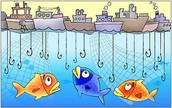What is OverFishing ?