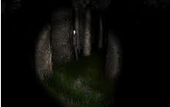 Slenderman found in the woods