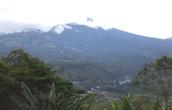¡Panamá tiene muchas selvas!