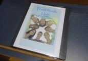Teen Book Lists-