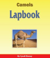 Animals Lapbook Series