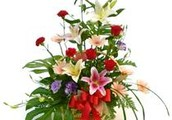 Send Fresh Flowers to India by Country Flora