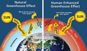 Increase of CO2 in the Atmosphere