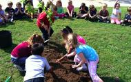 DIrt, Dirt, & More Dirt!