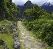 The Royal Road in the Inca Empire