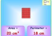 Geometric measurement: area