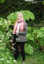 Den passionerade trädgårdsturisten Ann Larås