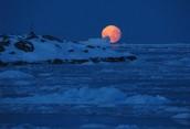 Антарктида — самый холодный материк Земли.