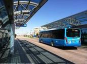 Bus Transits
