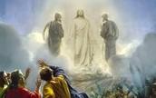 Divine Jesus