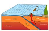Oceanic Oceanic Convergent