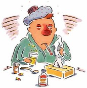 What is the common cold?