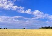 flat flat land