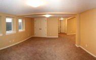 Bright & Spacious Finished Basement