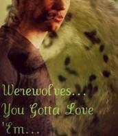 Werewolves.. You Gotta Love 'Em...