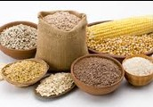 Foods in the Grains Group