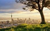 Vaade Auckland'i linnale, taustal Sky Tower