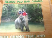 Guin's mom brought in pictures from her trip to Thailand