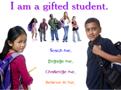 Strategies to Support Gifted Students