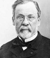 About Louis Pasteur!