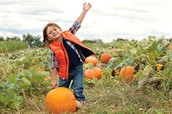 Enjoyed Pumpkin Picking