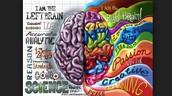 Left-Brain & Right-Brain