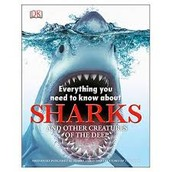 DK: Everything You Need to Know About Sharks