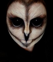Owl (Animal 2)