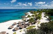 The beauty of Cozumel!