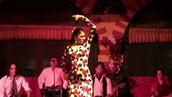 Flamenco en el hotel