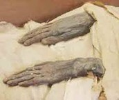 Mummies hands in natron