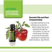 Gardening & Essential Oils