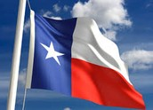 The Texas' flag