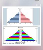 Pirámides del 2000 y del 2011 (Volutario)