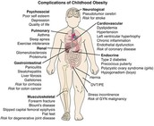 Health Effects of Obesity