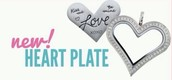 Just a Sneak Peek at one of the new Valentine items that are available Jan 2.  Check out my Facebook page at Origami Owl  Robyn Wentz for more of the new items.