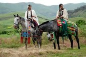 Horse and rider in traditional clothes