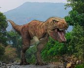 Description of the  tyrannosaurus Rex