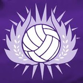 Volleyball Tryouts Finalized